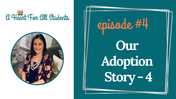 meeting our son's birth mom, domestic adoption story
