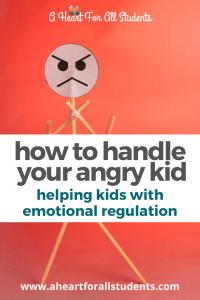 angry child, emotional regulation, adhd, autism, sensory processing, fasd, special needs mom