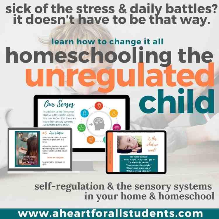 homeschooling explosive child, unregulated child, homeschool parent teacher training