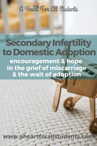 secondary infertility, domestic adoption, miscarriage, christian mom