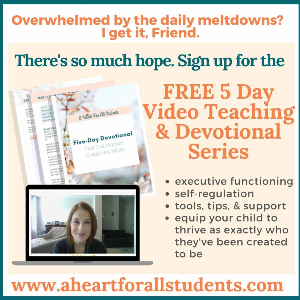 special needs mom bible study & devotional, parenting kids with adhd, autism
