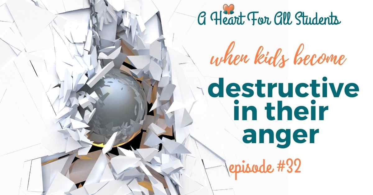 how to deal with angry destructive kids, adhd, autism, odd, toddlers, teens