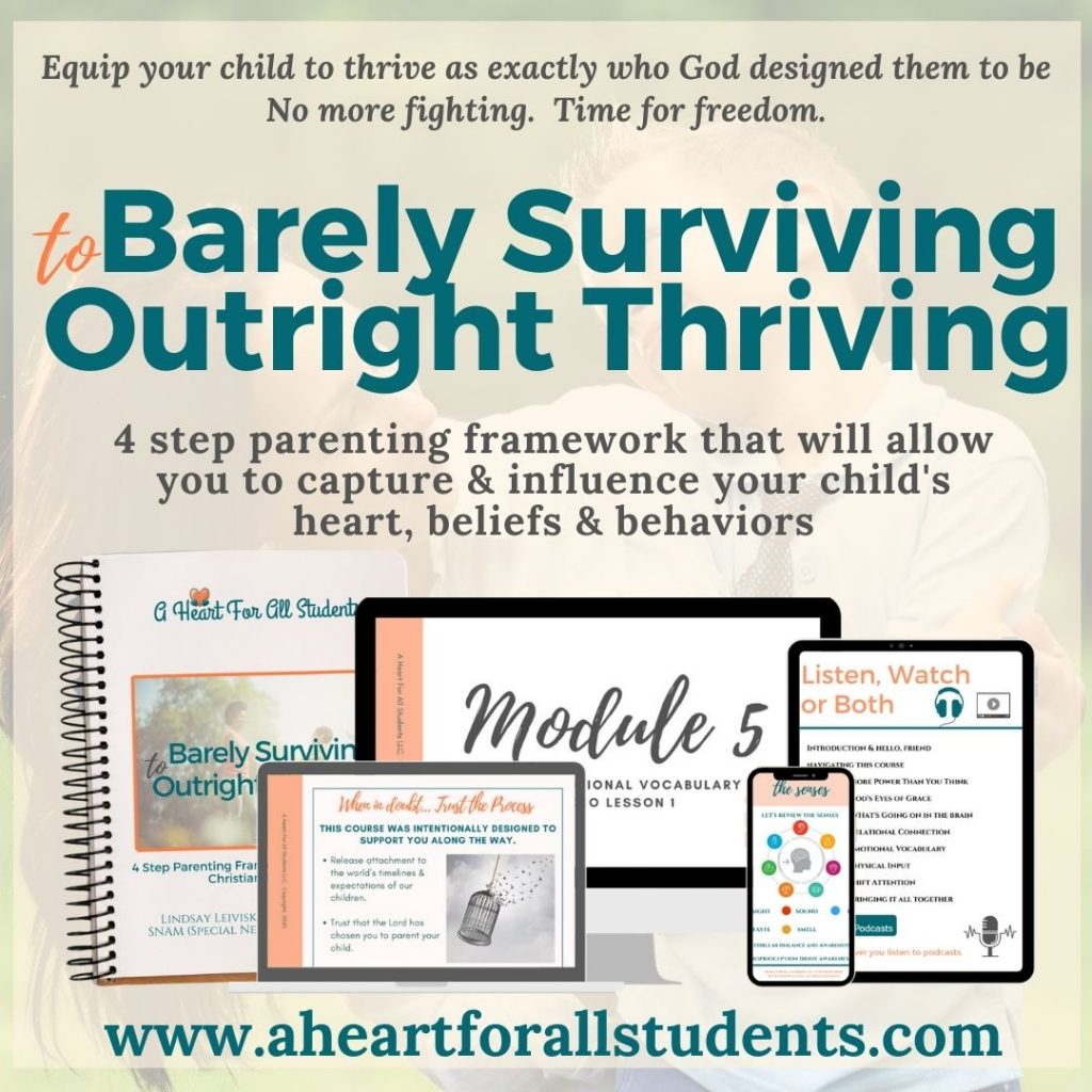 barely survivng to outright thriving special needs christian moms course, bible study for moms raising kids with adhd, autism, anxiety